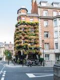 Voorgevel van de bar van Metselaarswapens, West-Londen, met bloemvakjes advertentie Stock Afbeeldingen