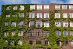 Voorgevel van de rode baksteenbouw met veelvoudige Vensters, Kopenhagen Stock Fotografie
