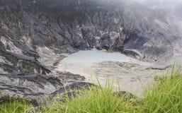 Voorgrondgras bij vulkaanberg Royalty-vrije Stock Foto