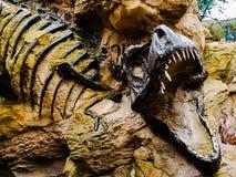 voorhistorisch stock afbeeldingen