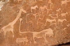 Voorhistorische rotsgravures, Namibië Stock Fotografie