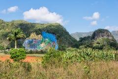 Voorhistorische Wall Mural DE La Prehistoria in Vinales Cuba Royalty-vrije Stock Afbeeldingen