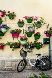 Bicycle parked against a bright wall with pots of flowers