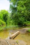 Voorlopige brug meer dan de houten bar Stock Afbeeldingen