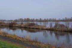 Vooroevernatuurreservaat in Nederland Stock Foto