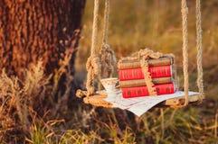 Voorraad van boeken op de schommeling Royalty-vrije Stock Foto's