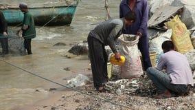 Voorraad Videolengte die water uithollen uit de boot die zeeschelpen in zakken doen verzamelen, die door een netwerk van vissersg stock footage