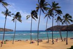 Voorraadbeeld van Hanauma-Baai, Oahu, Hawaï Royalty-vrije Stock Afbeelding
