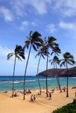Voorraadbeeld van Hanauma-Baai, Oahu, Hawaï Royalty-vrije Stock Fotografie