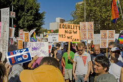 Voorstel 8 de Verzameling & Maart van het Protest in Los Angeles Royalty-vrije Stock Afbeeldingen