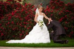 Voorstel van huwelijks pop vraag Royalty-vrije Stock Foto