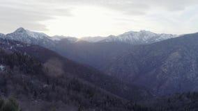 Vooruit beweegt over naakt dalingshout bos en sneeuwberg in de herfst of de winterzonsondergang Openlucht zonnige aard scape stock footage
