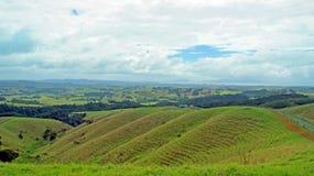 Vooruitzicht aan de Baai van Waiou en van de Brasem royalty-vrije stock foto's