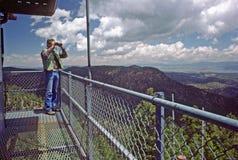 vooruitzicht in brand-toren   Stock Fotografie