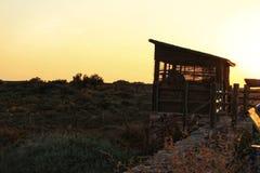 Vooruitzicht voor trekvogels in het moerasland van Cabo DE Gata royalty-vrije stock afbeelding