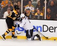 Voorwaarts Michael Ryder, Boston Bruins Stock Afbeeldingen