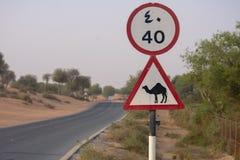 Voorzichtig zijn van kwam; de kruising van teken in een woestijnweg of straat in de Verenigde Arabische Emiraten stock fotografie