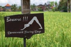 Voorzichtig zijn van signage van naar beneden toegekeerde honden stock foto