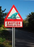 Voorzichtigheidsleguanen op Wegwaarschuwingsbord stock foto's