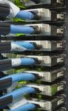 Voorzien van een netwerk dat in een moderne datacenter telegrafeert stock afbeelding