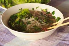 Voorzijde van de soep van de de stijlnoedel van Pho Laos met groenten royalty-vrije stock fotografie