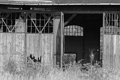 Voorzijde van het oude spoorwegdepot royalty-vrije stock foto