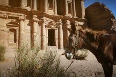 Voorzijde van Klooster bij Petra, Jordanië Stock Foto's