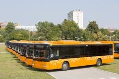 Voorzijde van openbaar vervoer de nieuwe bussen Royalty-vrije Stock Afbeeldingen