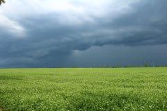 """Vor dem Regen ПÐ?Ñ€Ð?Ð Ð'Ð ¾ Ñ ‰ Ð?Ð ¼ Regnerische Himmel Ð"""" Ð-¾ Ñ ‰ Ð ¾ Ð ² иР¹ Ð ½ Ð?бР¾ stockfotografie"""