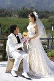 Vor-Hochzeit Lizenzfreie Stockfotos