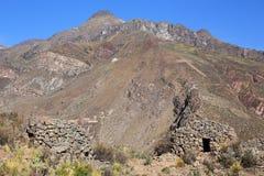 Vor-Inkarunde Häuser nannten colca nahe Chivay in Peru Lizenzfreie Stockfotos