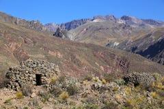 Vor-Inkarunde Häuser nannten colca nahe Chivay in Peru Stockbild