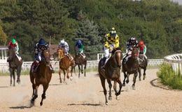 Vor Pferdenrennen Stockfoto