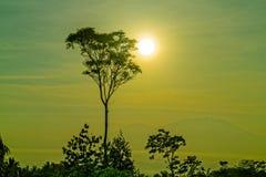 Vor Sonnenuntergang Lizenzfreie Stockfotos
