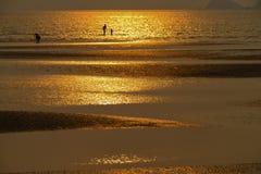 Vor Sonnenuntergang Lizenzfreies Stockbild