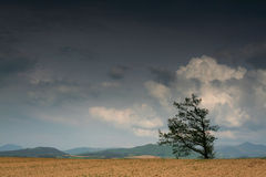Vor Wolken Lizenzfreie Stockbilder