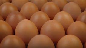 Vorbeibewegen an viele von Hen Eggs stock video footage