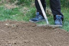 Vorbereiten des Bodens für das Pflanzen Stockfotografie