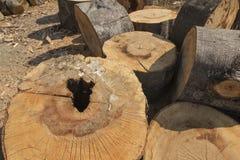 Vorbereiten des Holzes für Brennstoff Stockbild