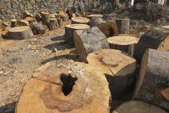 Vorbereiten des Holzes für Brennstoff Lizenzfreie Stockfotografie