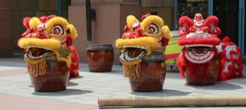 Vorbereiten für den Tanz von Löwen stockfoto