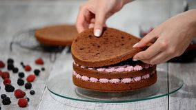 Vorbereiten, Schokoladenkuchen mit Beeren machend Frau ` s Hand verzieren Kuchen stock video