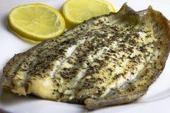 Vorbereitetes, gekochtes, gebratenes, gebackenes einziges Fischfilet lizenzfreies stockbild