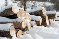 Vorbereitung des Feuerholzes Lizenzfreie Stockfotos