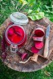 Vorbereitung für in Büchsen konservierte Rote-Bete-Wurzeln im Sommer Stockfotos