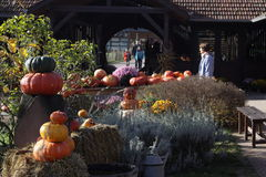 Vorbereitung für Halloween stockbilder