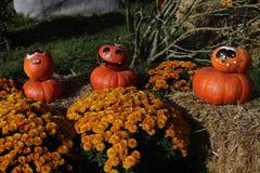 Vorbereitung für Halloween Stockbild
