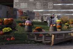 Vorbereitung für Halloween Lizenzfreie Stockfotografie