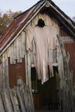 Vorbereitung für Halloween Lizenzfreies Stockfoto