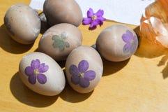 Vorbereitung von Ostereiern für das Sterben mit Zwiebel stockbilder